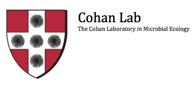Cohan Lab